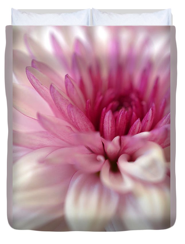 Chrysanthemum Duvet Cover featuring the photograph Alluring by Deb Halloran