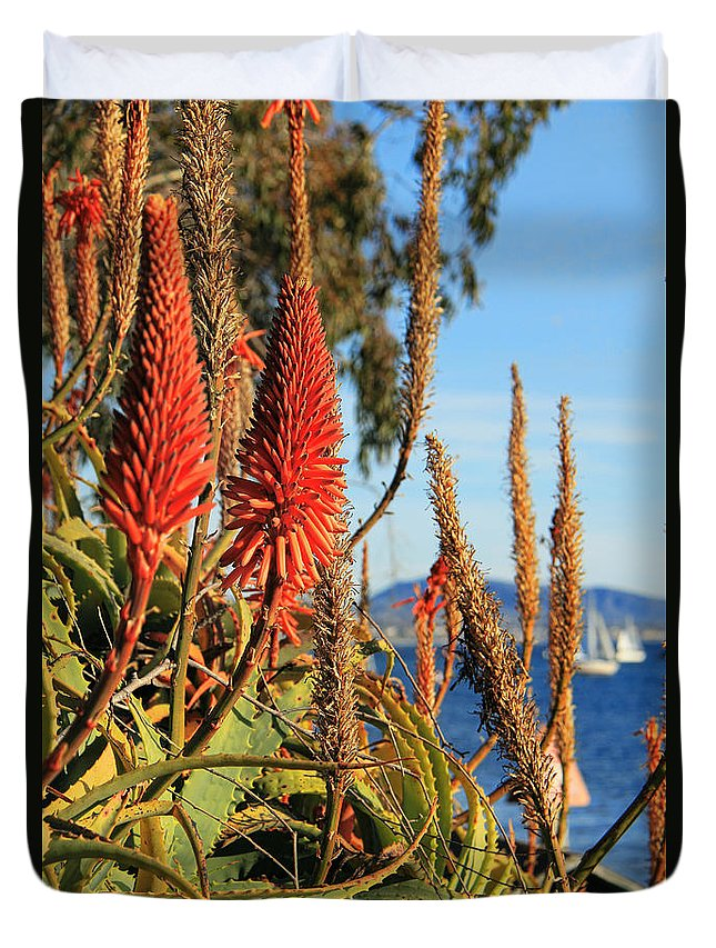 Aloe Vera Bloom Duvet Cover featuring the photograph Aloe Vera Bloom by Mariola Bitner