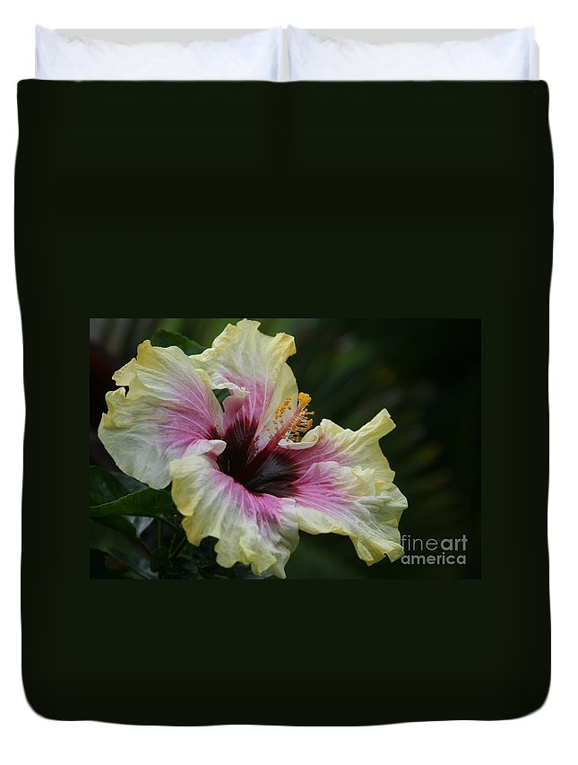 Aloha Duvet Cover featuring the photograph Aloha Aloalo Tropical Hibiscus Haiku Maui Hawaii by Sharon Mau