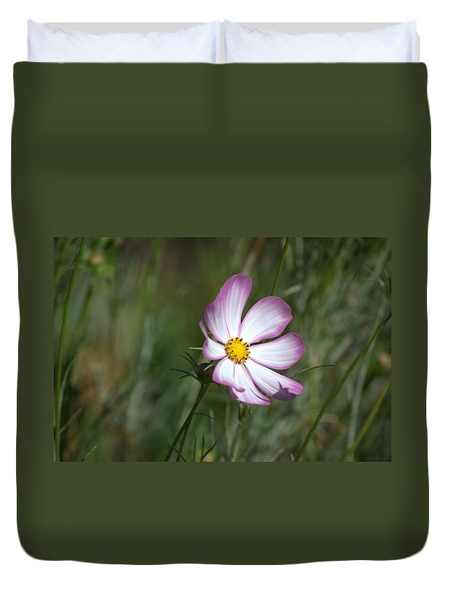 Zinnia Blowing In The Wind Duvet Cover featuring the photograph Alone by Paula Contreras