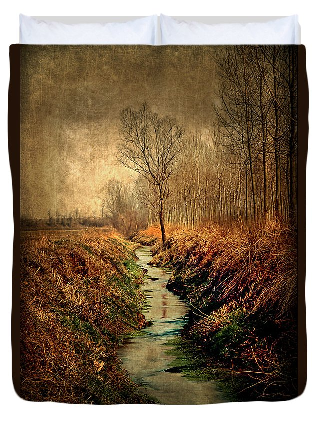 Nikonscanv Duvet Cover featuring the photograph Along The Canal by Roberto Pagani