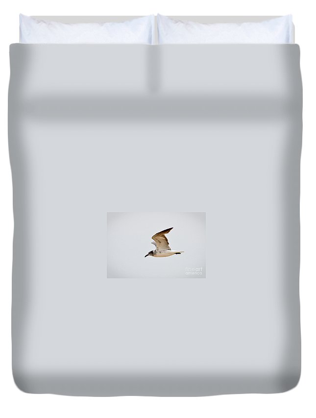 Seagull Duvet Cover featuring the photograph Alongside - Seagull by John Waclo