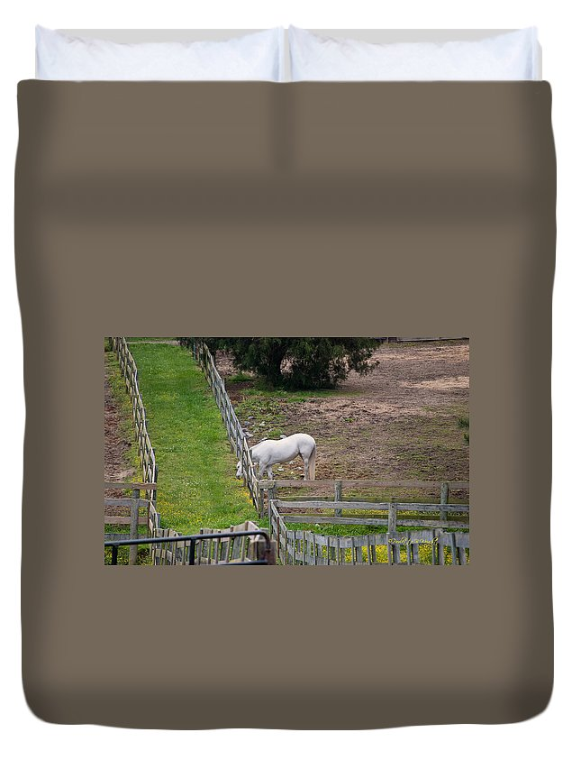 Feature Art Duvet Cover featuring the photograph Always Greener On The Other Side by Paulette B Wright