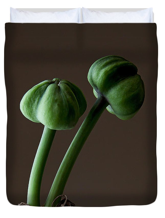 Plant Duvet Cover featuring the photograph Amarilla Pods  #3300 by J L Woody Wooden