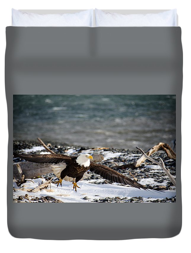 Bald Eagle Duvet Cover featuring the photograph Amazing Bald Eagle by Debra Miller