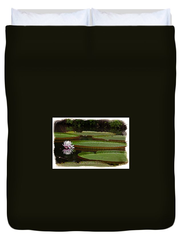 Amazon.lily Duvet Cover featuring the photograph Amazon Lily Pad by Farol Tomson