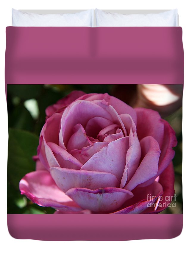 Rose Duvet Cover featuring the photograph American Beauty IIi by Christiane Schulze Art And Photography