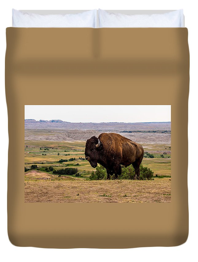 American Bison Duvet Cover featuring the photograph American Bison by Bill Lindsay
