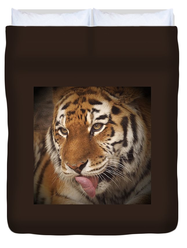 Tiger Duvet Cover featuring the photograph Amur Tiger 5 by Ernie Echols