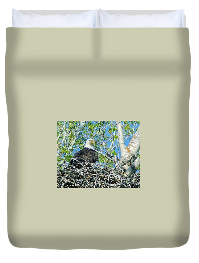 Eagles Duvet Cover featuring the photograph An Eagle In Its Nest by Jeff Swan