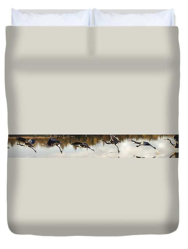 Nature Duvet Cover featuring the digital art Anatomy Of Flight by William Horden