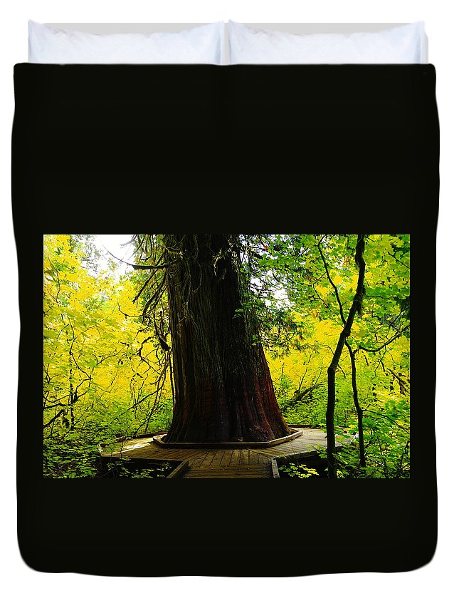 Wood Duvet Cover featuring the photograph Ancient Old Growth by Jeff Swan