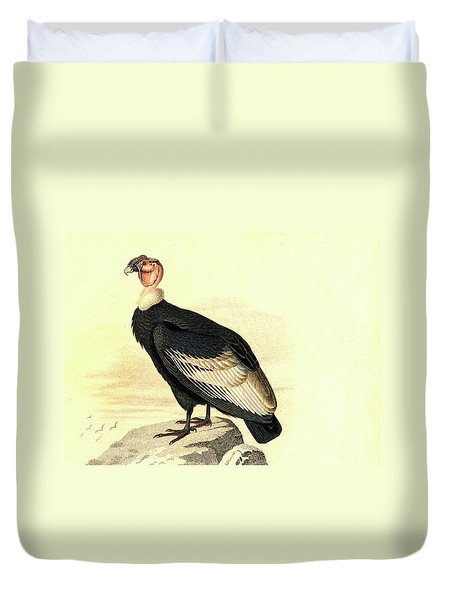 Condor Duvet Covers