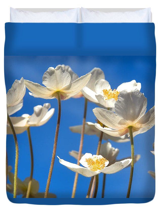 Blue Duvet Cover featuring the pyrography Anemone by Steffen Gierok