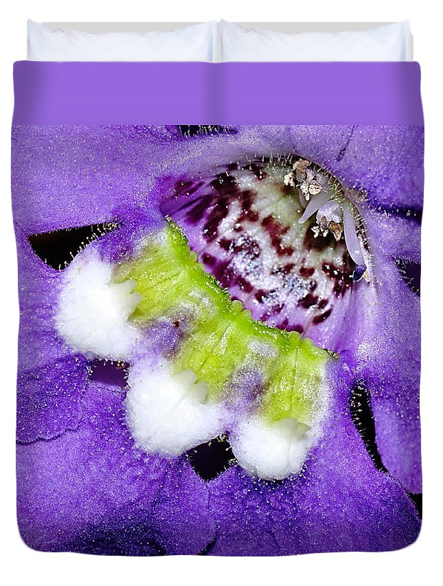 Photography Duvet Cover featuring the photograph Angel Face Blue - With Extra Petals And 3 Stamen by Kaye Menner