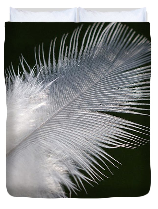 Angel Duvet Cover featuring the photograph Angel Feather by Carol Lynch