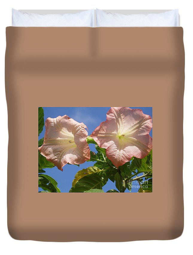 Flowers Duvet Cover featuring the photograph Angel's Trumpet by Cheryl Cutler