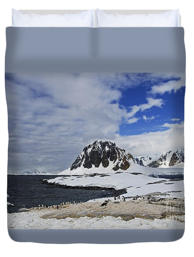 Festblues Duvet Cover featuring the photograph Antarctic Wilderness... by Nina Stavlund