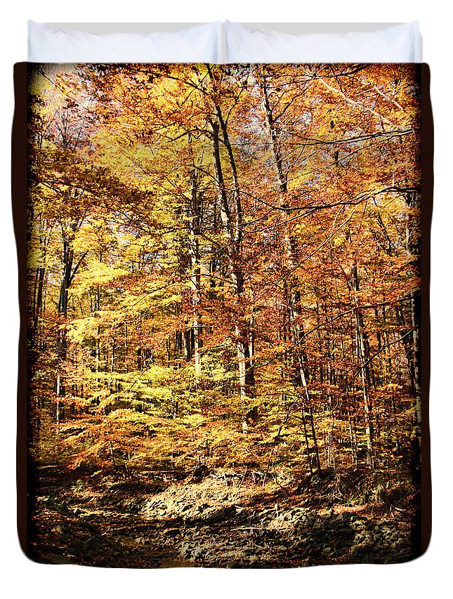 Antique Fall Duvet Cover featuring the photograph Antique Fall by Mariola Bitner
