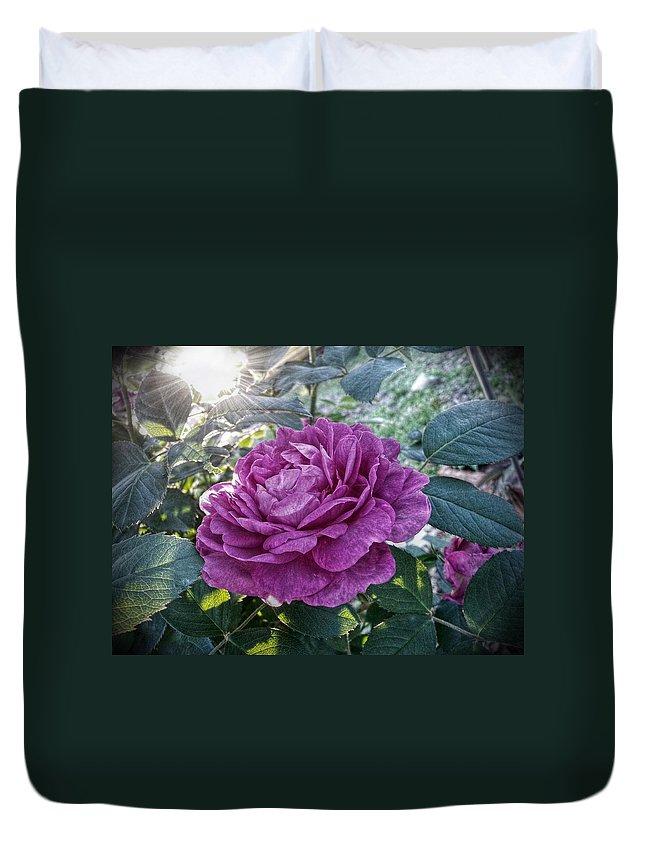 Antique Rose Duvet Cover featuring the digital art Antique Rose by Linda Unger