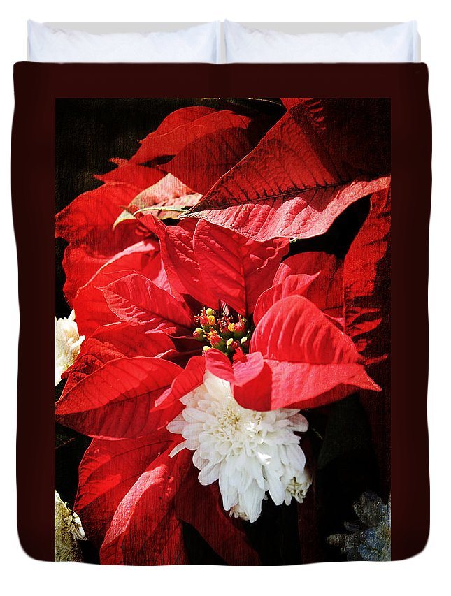 Christmas Duvet Cover featuring the photograph Antiqued Poinsettia by Robin Lewis