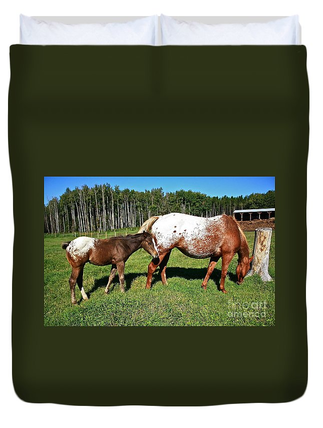 Horse Duvet Cover featuring the photograph Appaloosa Mamma And Baby by Linda Bianic
