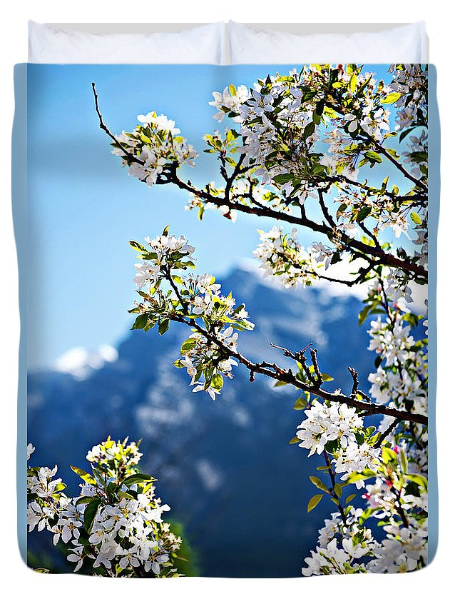 Apple Duvet Cover featuring the photograph Apple Blossoms Frame The Rockies by Lisa Knechtel