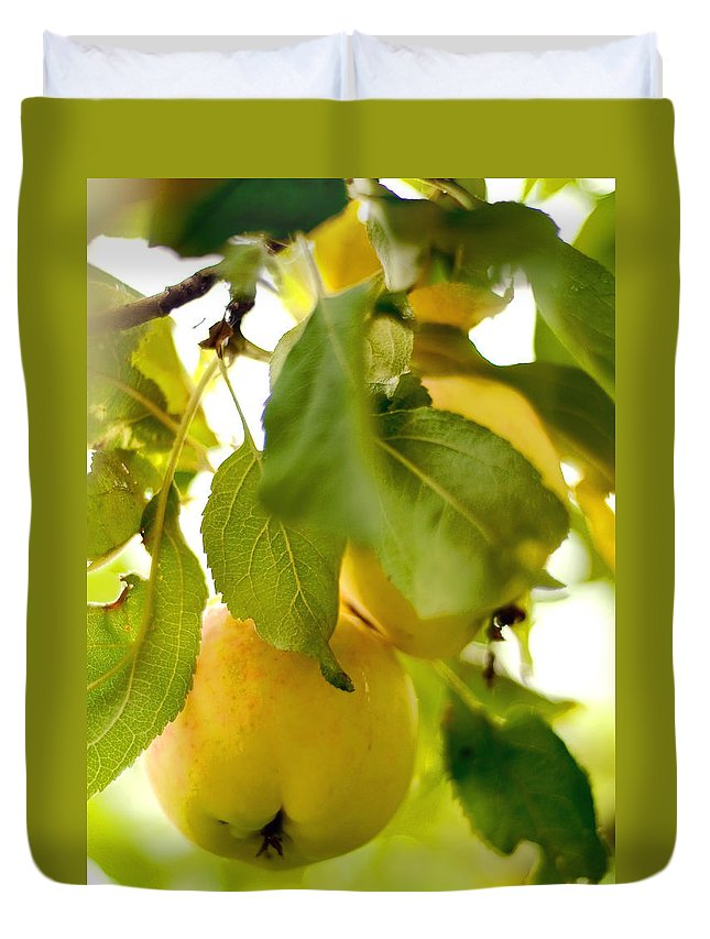 Apple Duvet Cover featuring the photograph Apple Taste Of Summer 1 by Jenny Rainbow