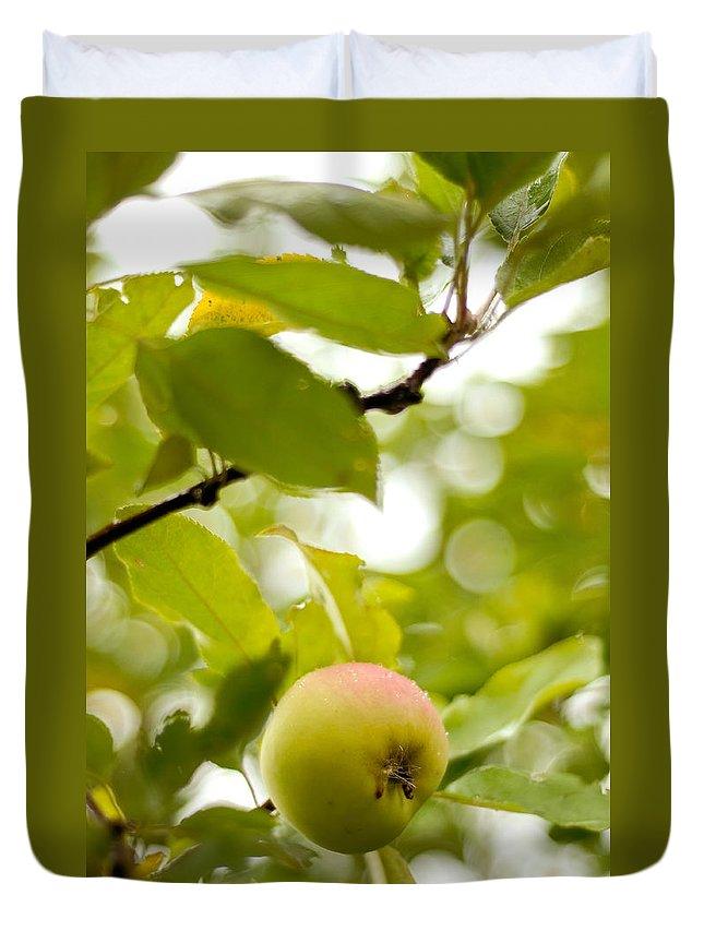 Jenny Rainbow Fine Art Photography Duvet Cover featuring the photograph Apple Taste Of Summer 2 by Jenny Rainbow