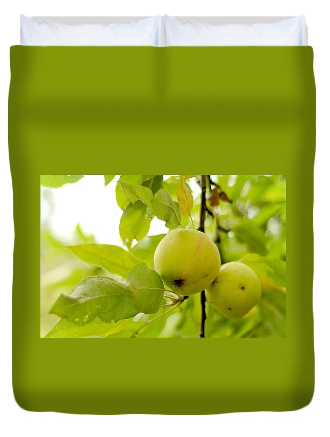 Apple Duvet Cover featuring the photograph Apple Taste Of Summer 3 by Jenny Rainbow
