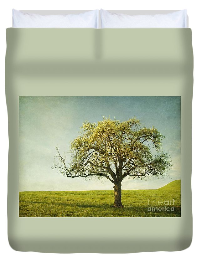 Appletree Duvet Cover featuring the photograph Appletree by Priska Wettstein