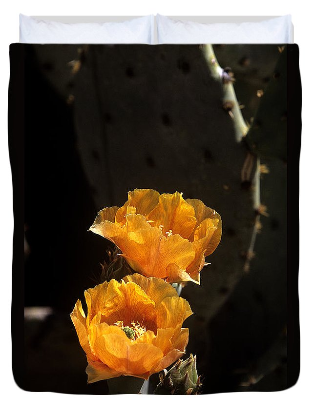 Cactus Duvet Cover featuring the photograph Apricot Blossoms by Kathy McClure
