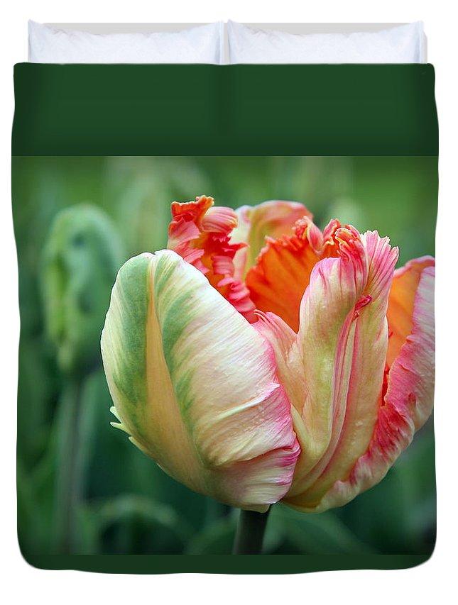 Joseph Skompski Duvet Cover featuring the photograph Apricot Parrot Tulip by Joseph Skompski