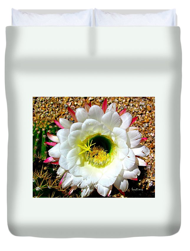 Flowers Duvet Cover featuring the photograph Argentine Cactus by Barbara Zahno