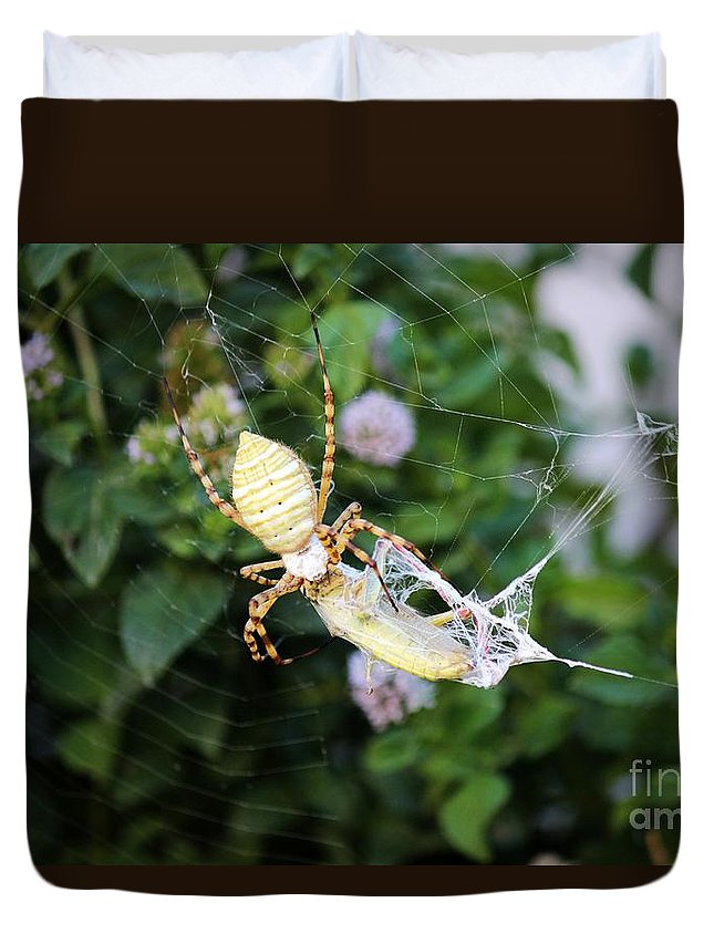 Argiope Duvet Cover featuring the photograph Argiope Spider Top Side Horizontal by Sheryl Young