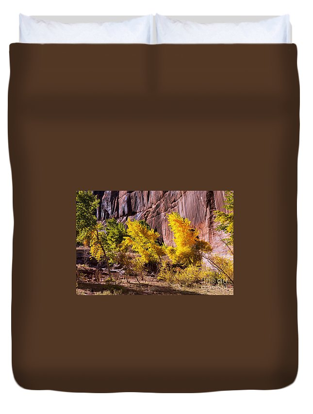 Canyon De Chelly Arizona Park Parks White House Ruins Trail Trails Fall Foliage Autumn Color Tree Trees Red Rock Cliff Cliffs Landscape Landscapes Duvet Cover featuring the photograph Arizona Autumn Colors by Bob Phillips
