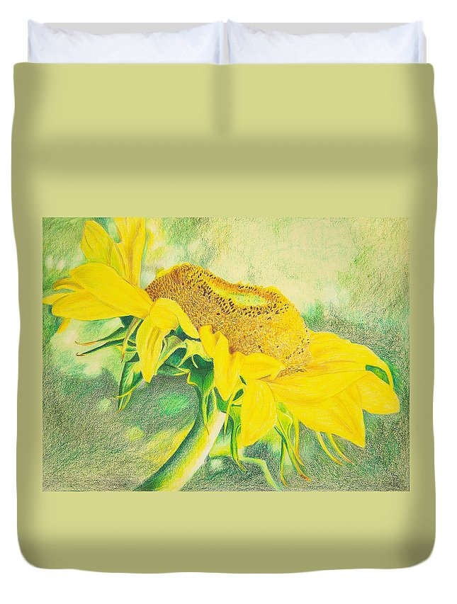Sunflower Art Print Duvet Cover featuring the mixed media Sunflower Print Art For Sale Colored Pencil Floral by Diane Jorstad