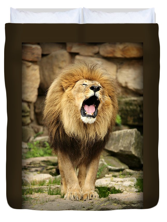Lion Duvet Cover featuring the photograph Aslan's Roar by Stephen Stookey