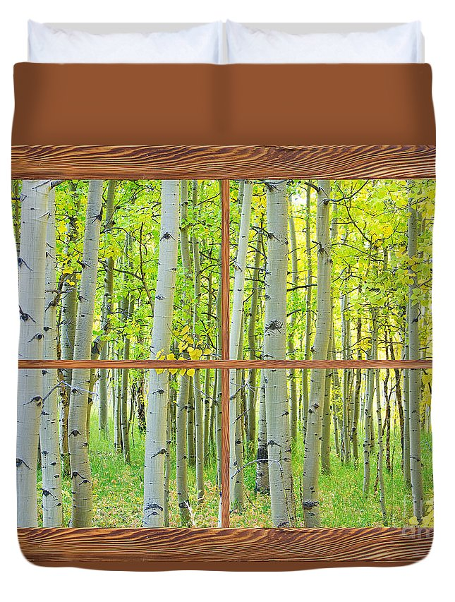 Aspens Duvet Cover featuring the photograph Aspen Tree Forest Autumn Picture Window Frame View by James BO Insogna