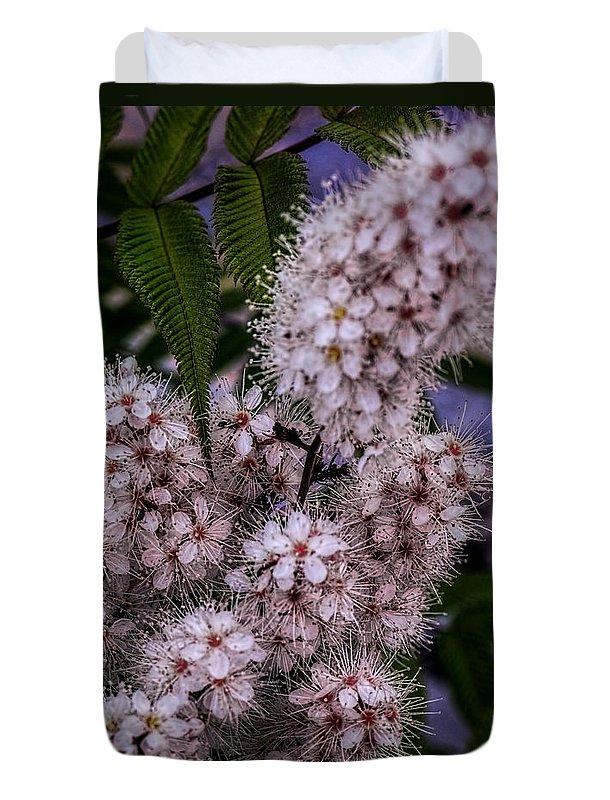 Plants Duvet Cover featuring the photograph Aspire by Jo-Anne Gazo-McKim