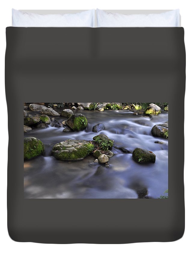 Water Duvet Cover featuring the photograph At The Banias River 1 by Dubi Roman