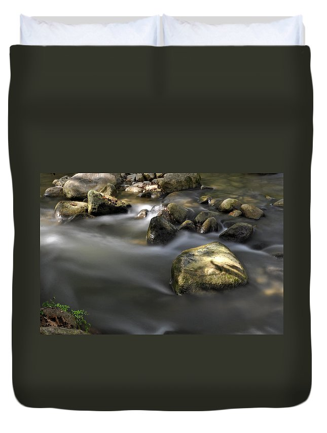 Water Duvet Cover featuring the photograph At The Banias River 2 by Dubi Roman