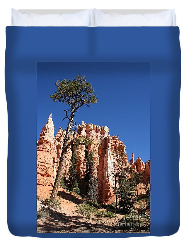Canyon Duvet Cover featuring the photograph At The Bottom Of The Bryce Np by Christiane Schulze Art And Photography