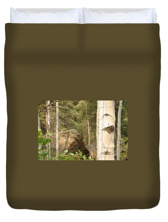 Continental Divide Duvet Cover featuring the photograph At The Continental Divide by Steve Scheunemann