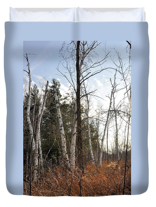 Wetland Duvet Cover featuring the photograph At The Edge Of The Wetland by Valerie Kirkwood