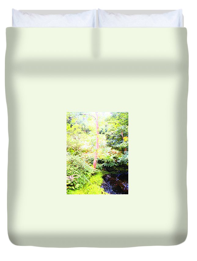 Expressive Duvet Cover featuring the photograph Atmosphere by Lenore Senior