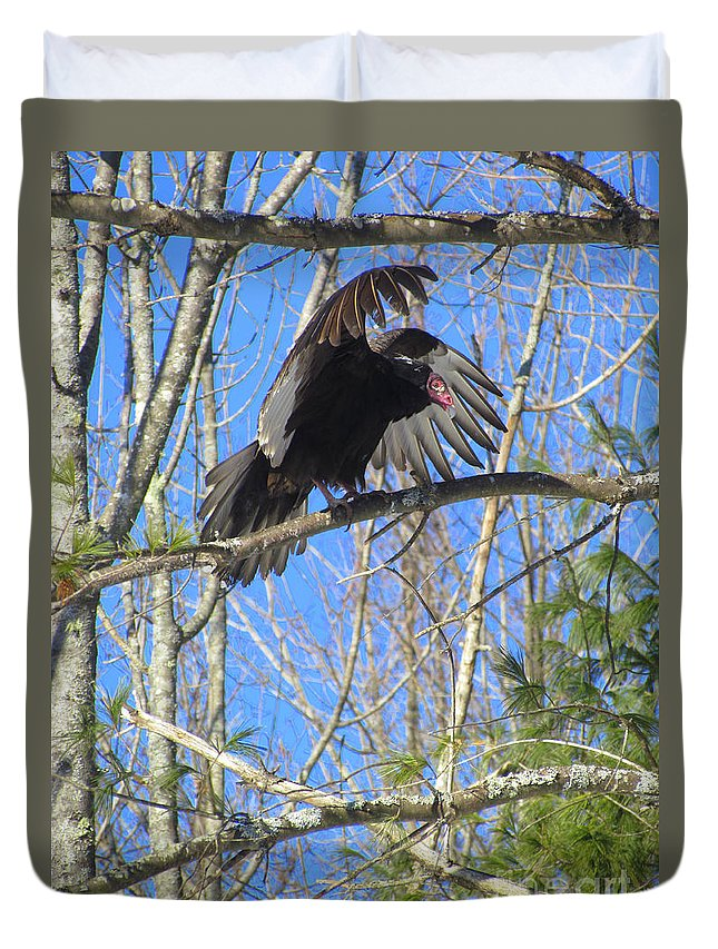Turkey Vulture Duvet Cover featuring the photograph Attack Of The Turkey Vulture by Elizabeth Dow