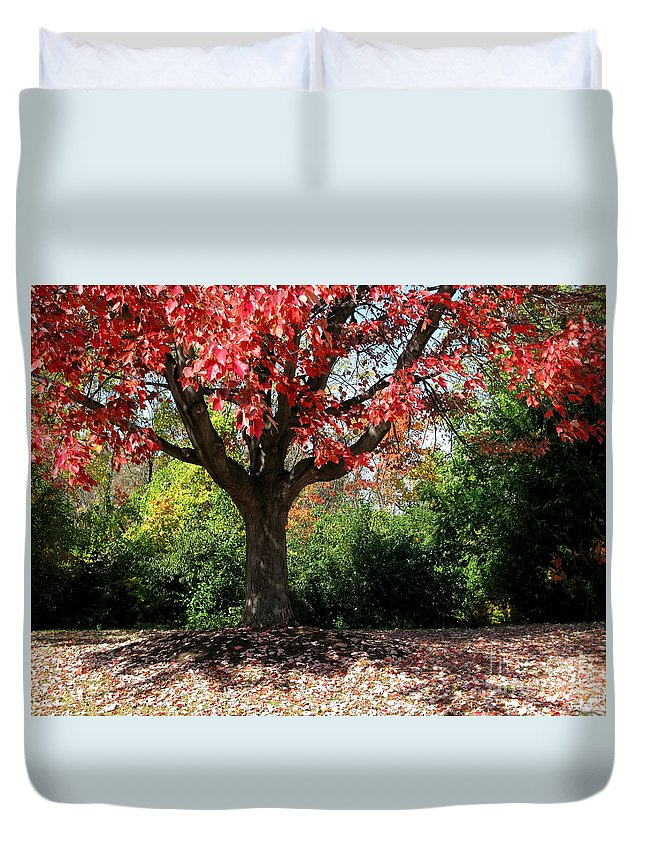 Autumn Duvet Cover featuring the photograph Autumn Ablaze by Ann Horn