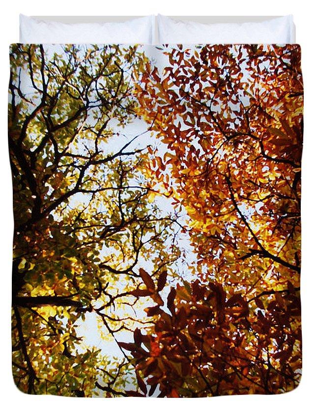Autumn Chestnut Canopy Duvet Cover featuring the photograph Autumn Chestnut Canopy  by Martin Howard