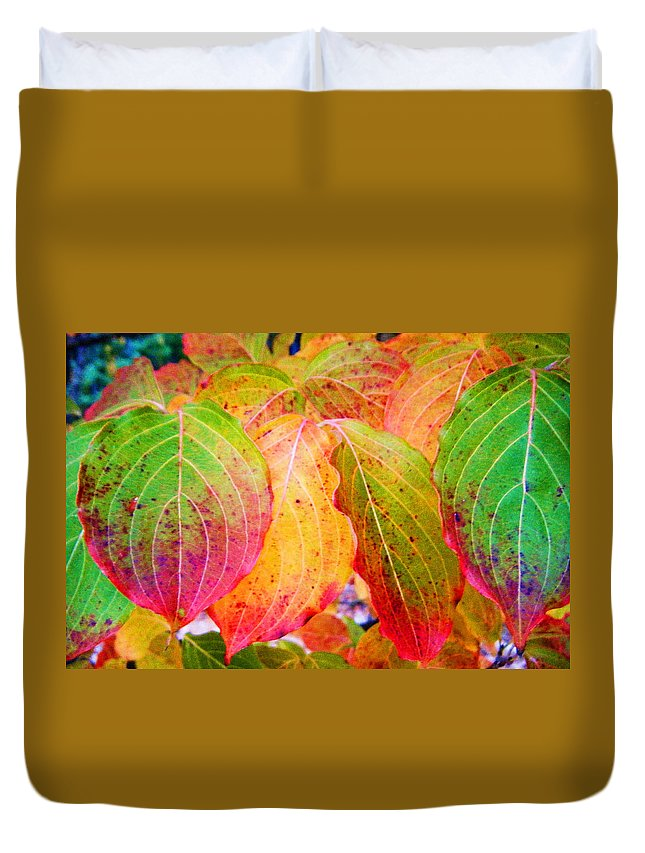 Autumn Colored Leaves Duvet Cover featuring the photograph Autumn Colored Leaves by Cynthia McCullough